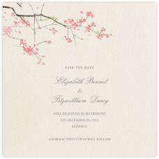 Wedding - Paperless Post