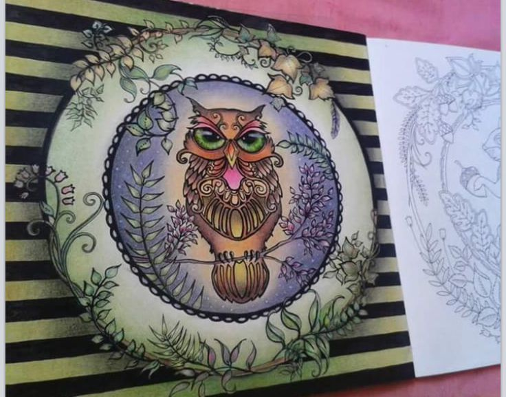 Enchanted Forest Owl