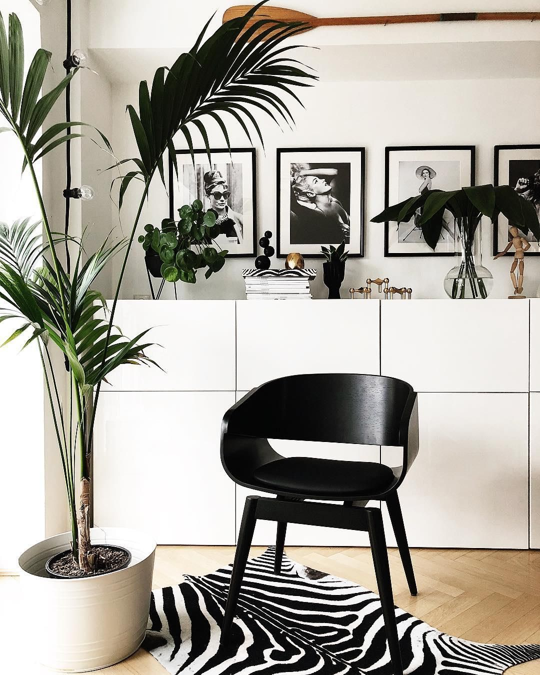 Wunderschöne Bilder, goldige Akzente, Pflanzen, elegante Deko