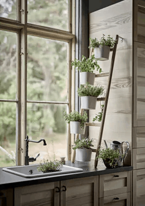 Ikea Items That Designers Rave About And Would Buy Kitchen Window Design Ikea Plants Kitchen Plants
