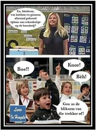 twentse spreuken humor Pin van WiHa op Twentse spreuken | Pinterest   Funny, Lol en Humor twentse spreuken humor