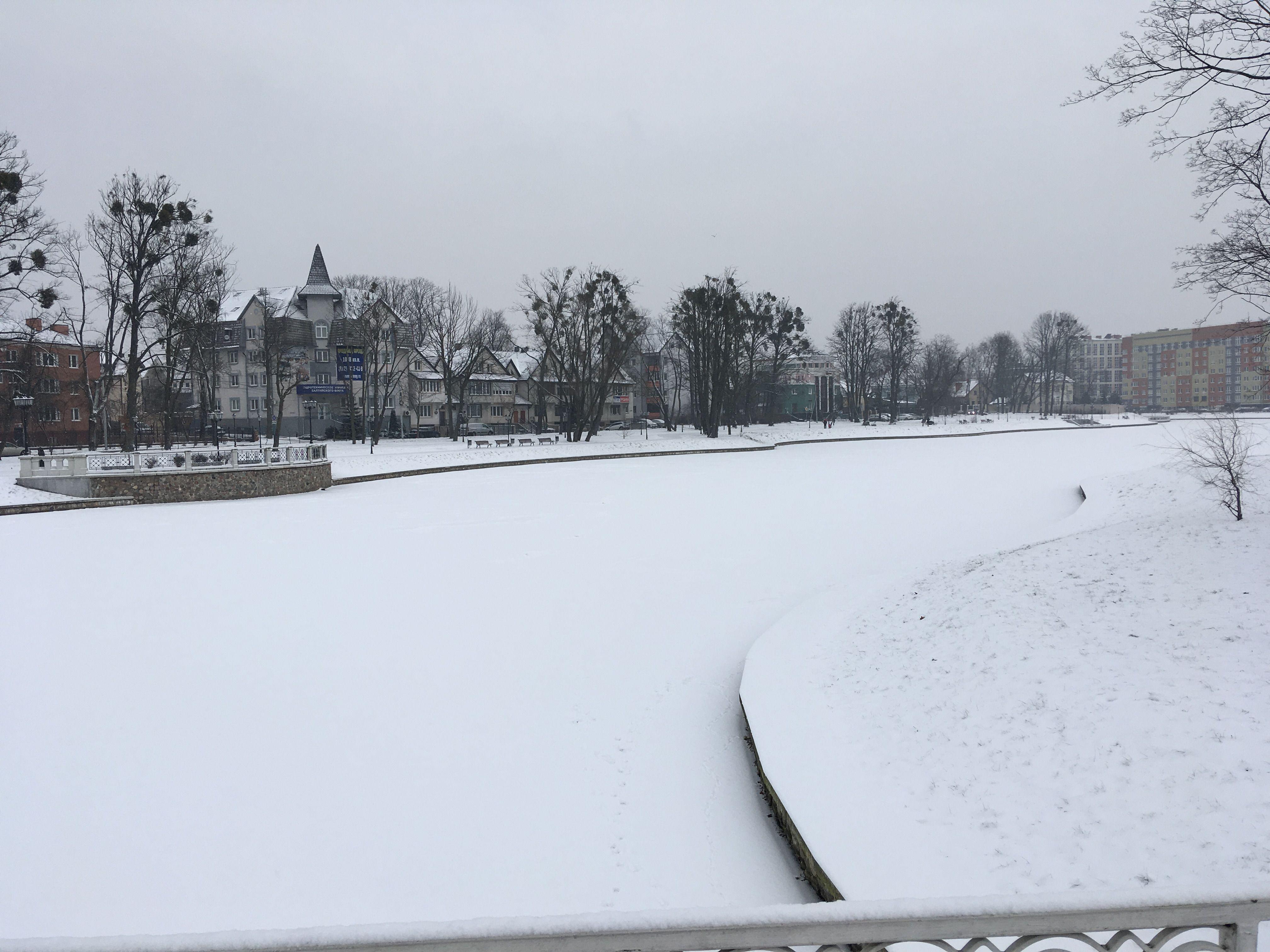 Замерзло городское озеро. Фото: Vladimir Shveda