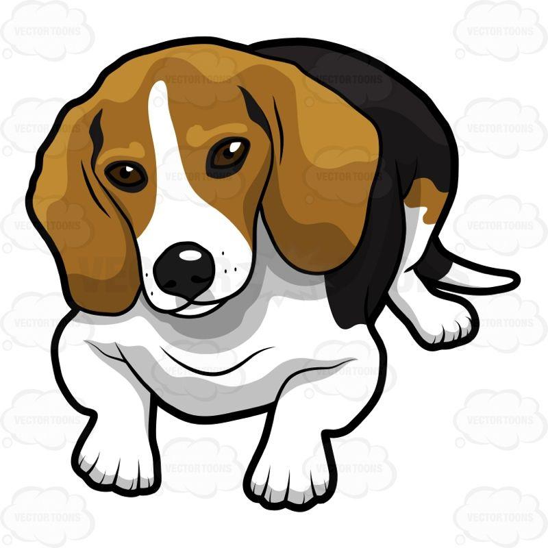 Cute Cartoon Beagle