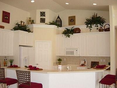 Kitchen Plant Shelf Decorating Ideas