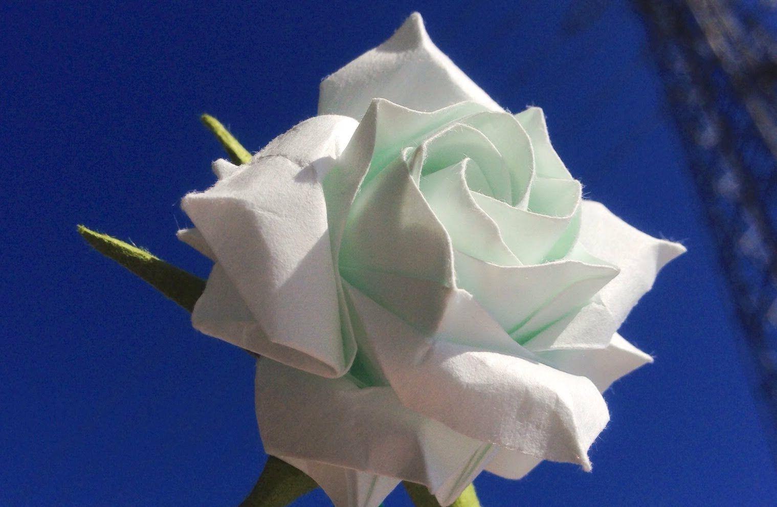 Gp Hoa Hng Trng 18 Cnh Origami Diy Pinterest Origami