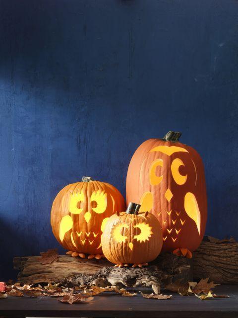 Best owl pumpkin ideas on pinterest