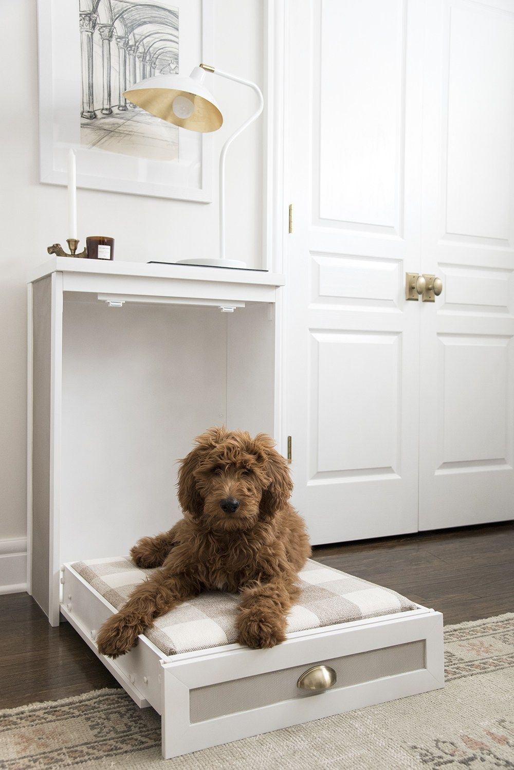 Comfy DIY Dog Beds Your Pooch Will Love in 2020 Murphy