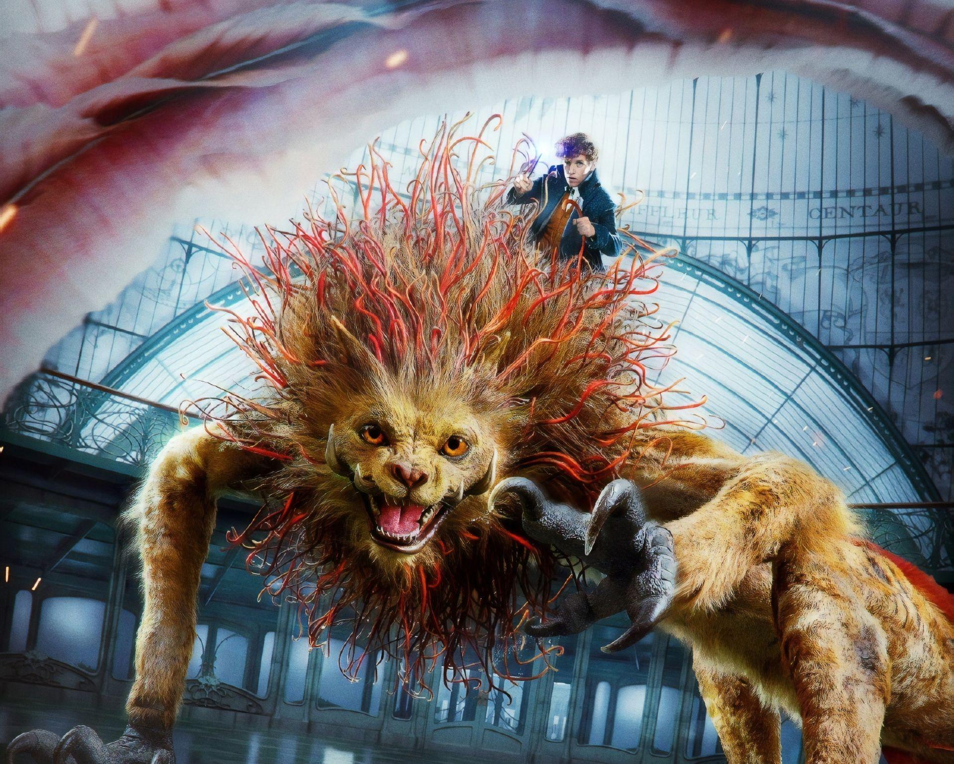 Movie Fantastic Beasts The Crimes Of Grindelwald Eddie