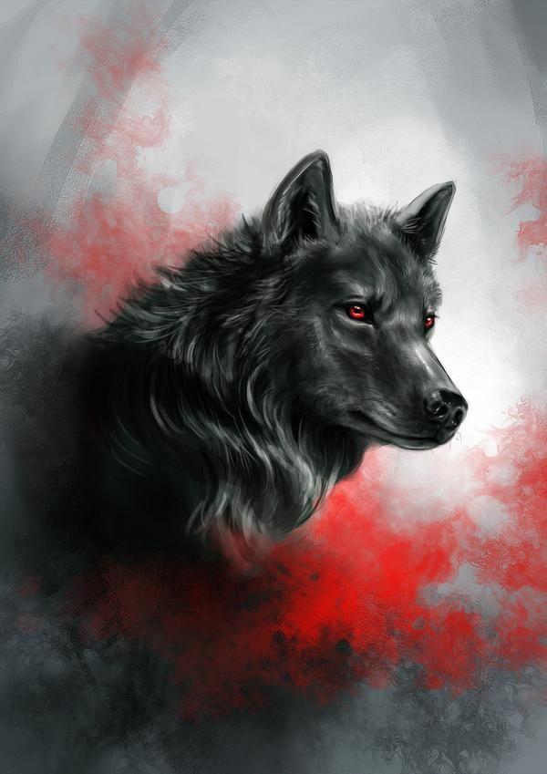 Photo of Scarlet Wolf by KimDingwall on DeviantArt