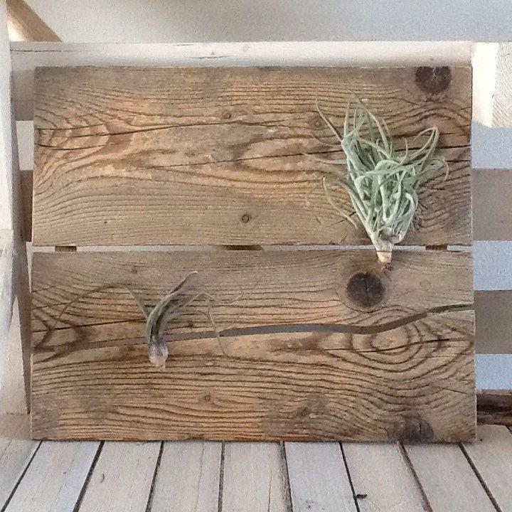 questo pannello in legno di recupero diventa una cornice perfetta ... - Piccolo Giardino Da Creare