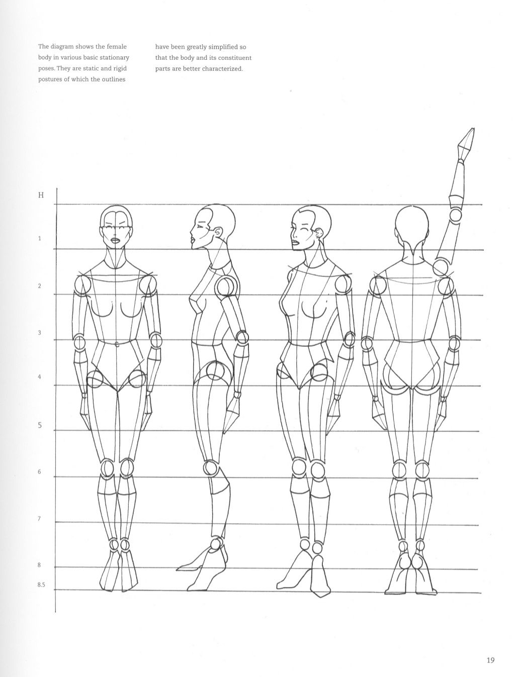 Figure drawing for fashion design | Doll drawing, Anatomy ...