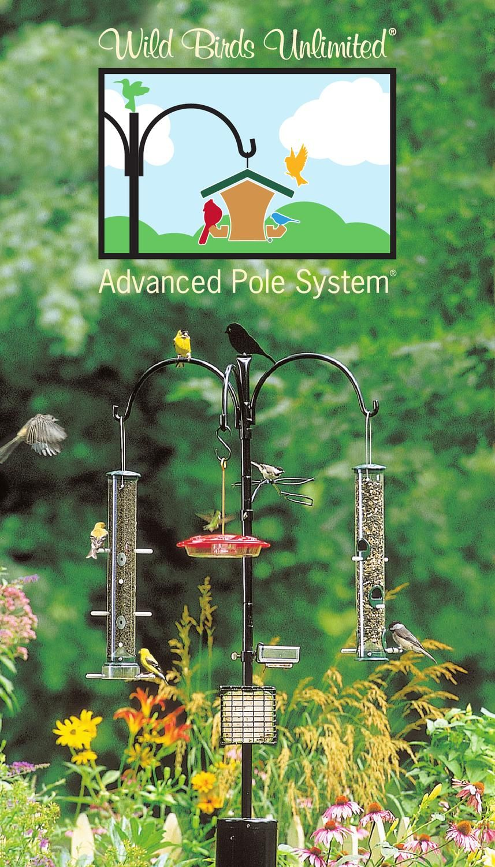 Wild Birds Unlimited Advanced Pole System Wild Birds Unlimited Wild Birds Wild Bird Feeders