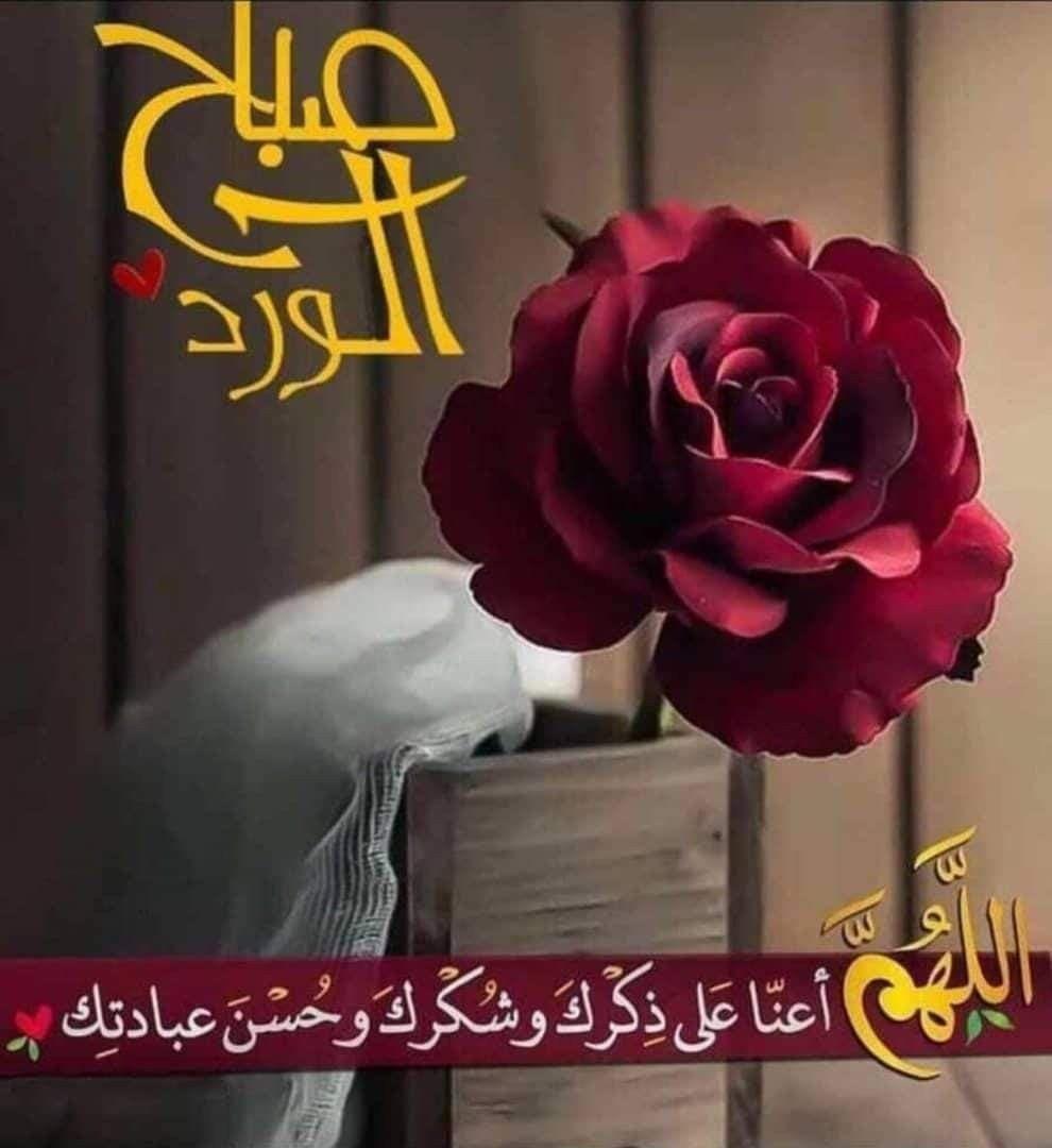 إشـــراقـــة الــجمعة السلام عليكم ورحمة الله وبركاته ال Good Morning Flowers Good Morning Images Flowers Beautiful Morning Messages