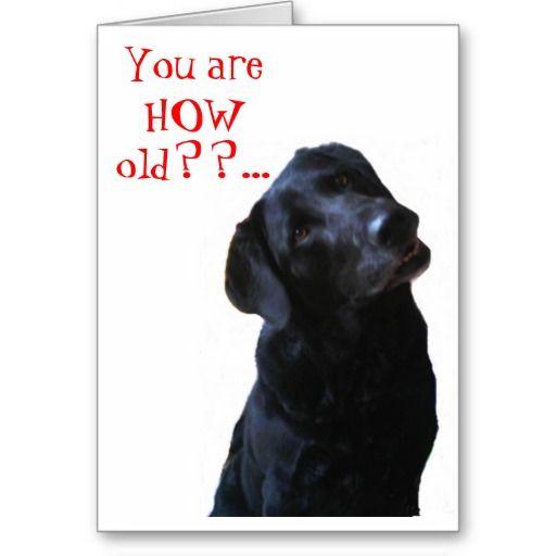 Funny Black Lab Dog Tipping Head Wishing Happy Birthday Greeting Card