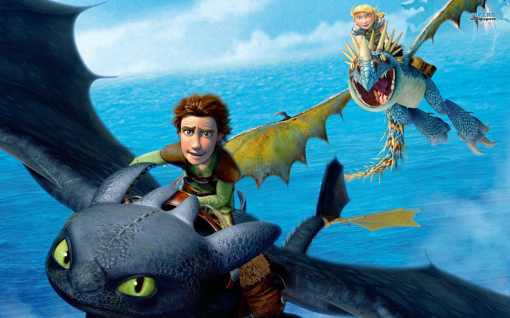 How To Train Your Dragon 2010 Really Cute Cartoon Loved All The Types Of Dragons How Train Your Dragon How To Train Your Dragon Hiccup And Toothless