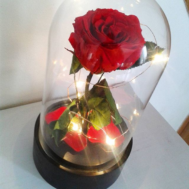 Cloche Verre Led Et Rose Eternelle La Belle Illuminee J Aime