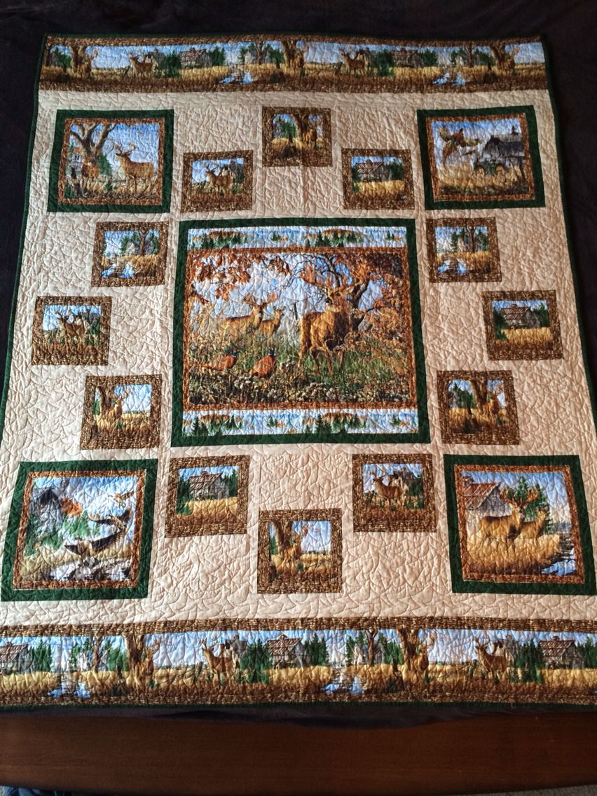 50++ Quilts made with panels inspirations