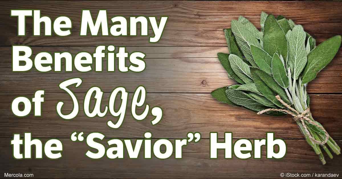 Sage is an exceptional herb that doesn't just add flavor ...