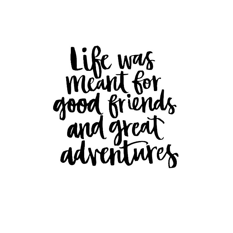 "Jasmin Kreulitsch▫️Kosmopoetin on Instagram: ""#regram @_kat_adventures_on . . . #instaquote #quoteoftheday #quote #travelquote #travelquotes #travelbug #travel #traveladdict…"""