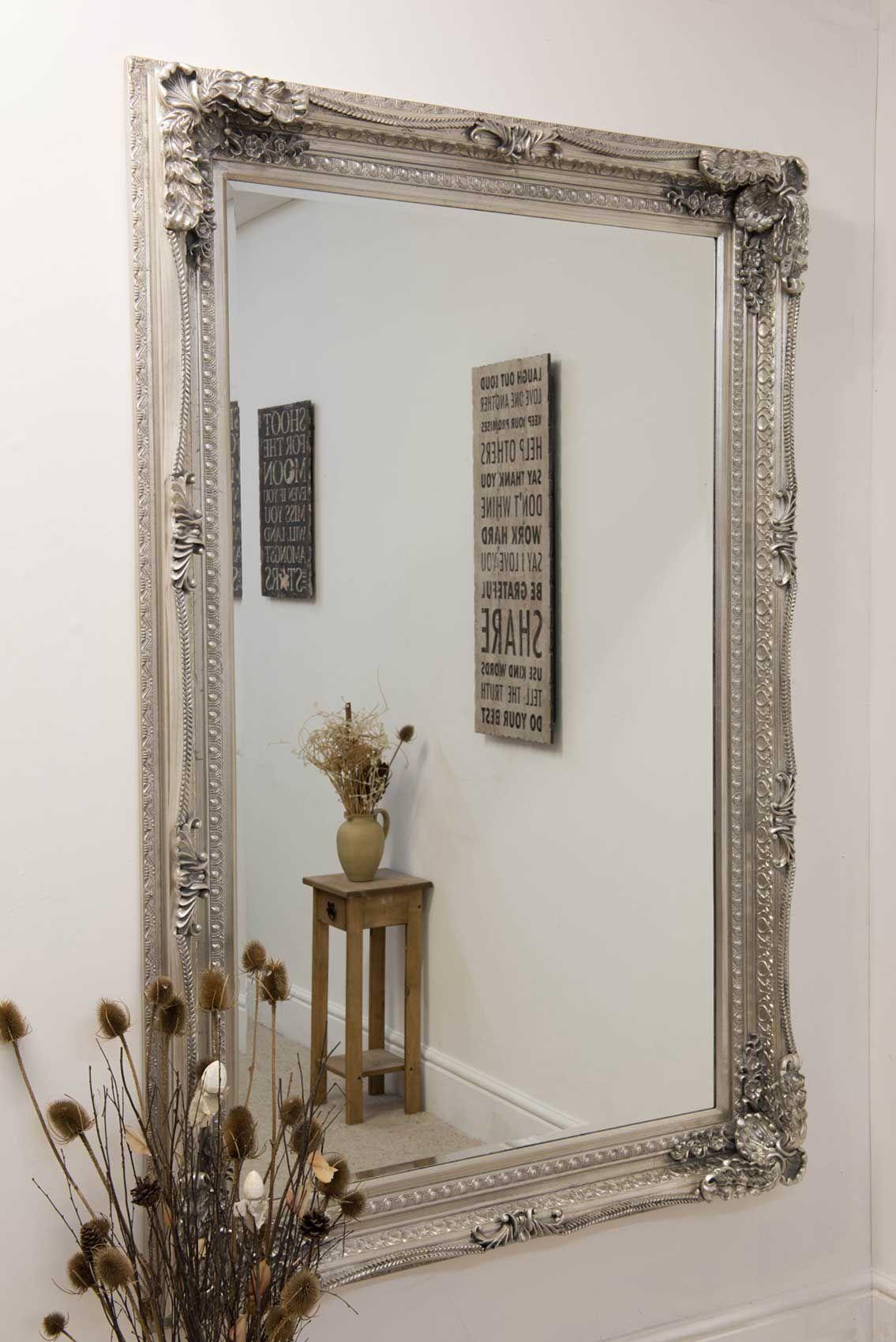Charlton Silver Framed Mirror 123x175cm | Frame mirrors, Mirrors ...