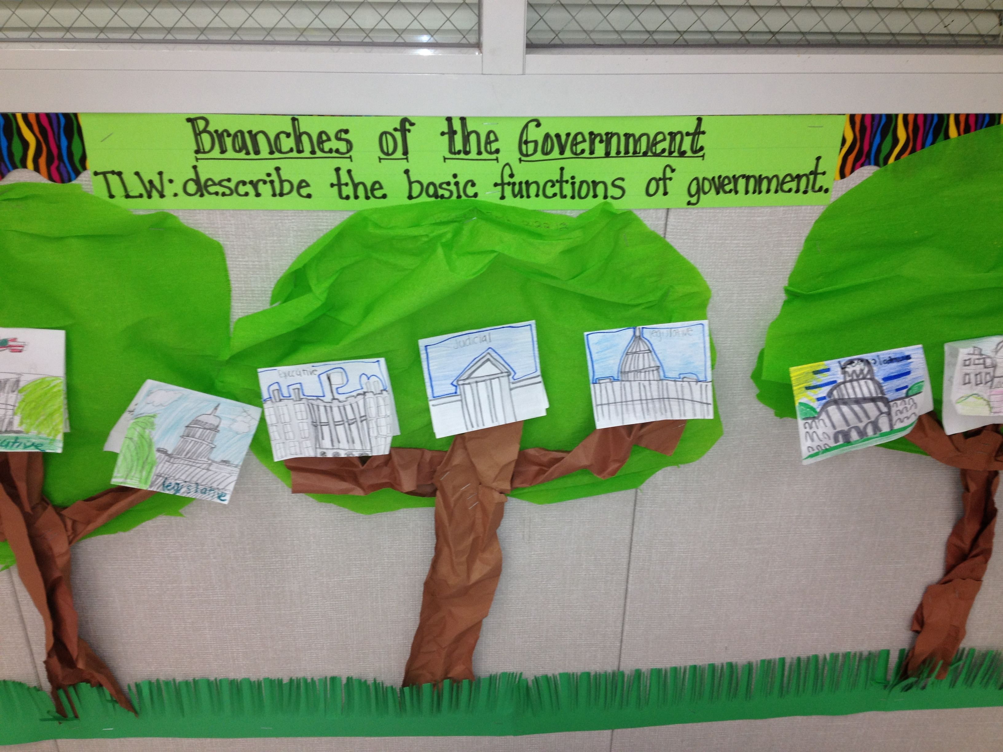 Branches Of The Government Trees