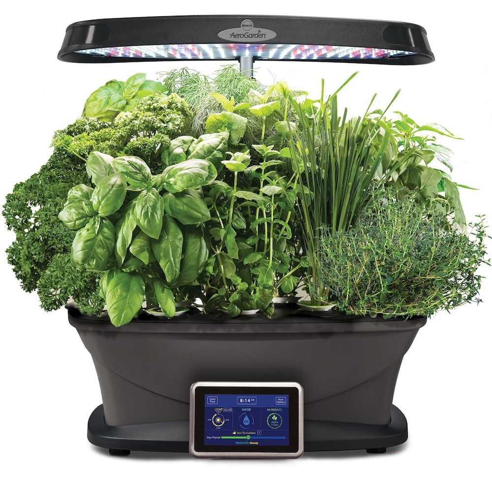 Aerogarden Bounty With Gourmet Herb Seed Pod Kit Herb Garden Kit