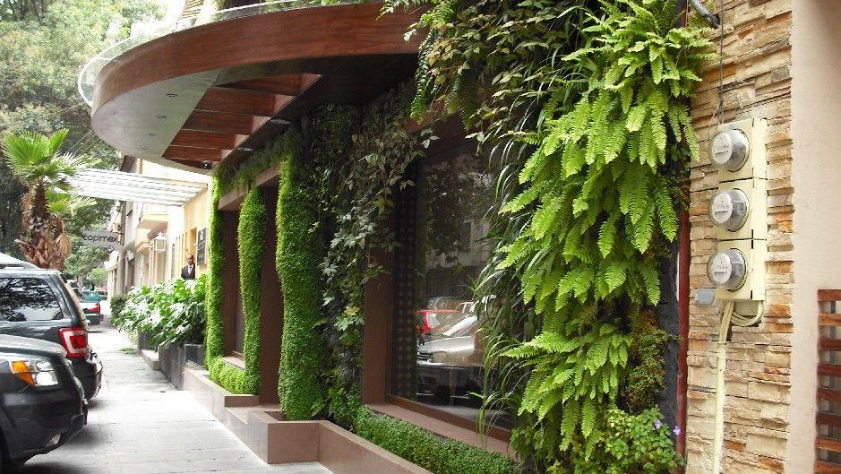 Muro verde en fachada de un restaurante muro verde en for Muros y fachadas verdes jardines verticales