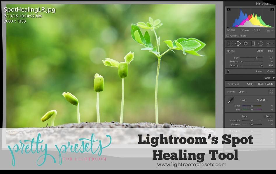 Lightroom 4 healing brush