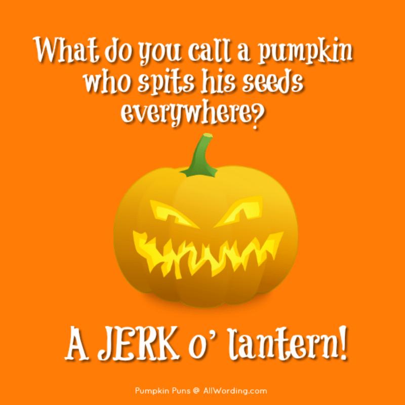Pun Kins A Plump And Tasty List Of Pumpkin Puns Pumpkin Puns Pumpkin Funny Puns