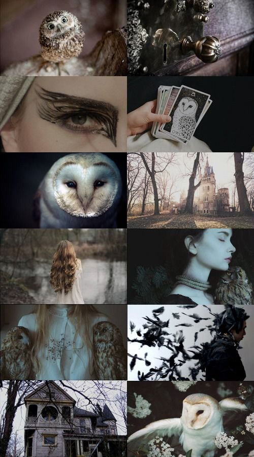 Violet Hecate | ars-aesthetica: Owl Witch #collageboard