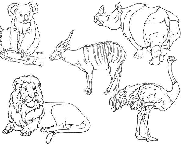 Land Animals Coloring Sheets
