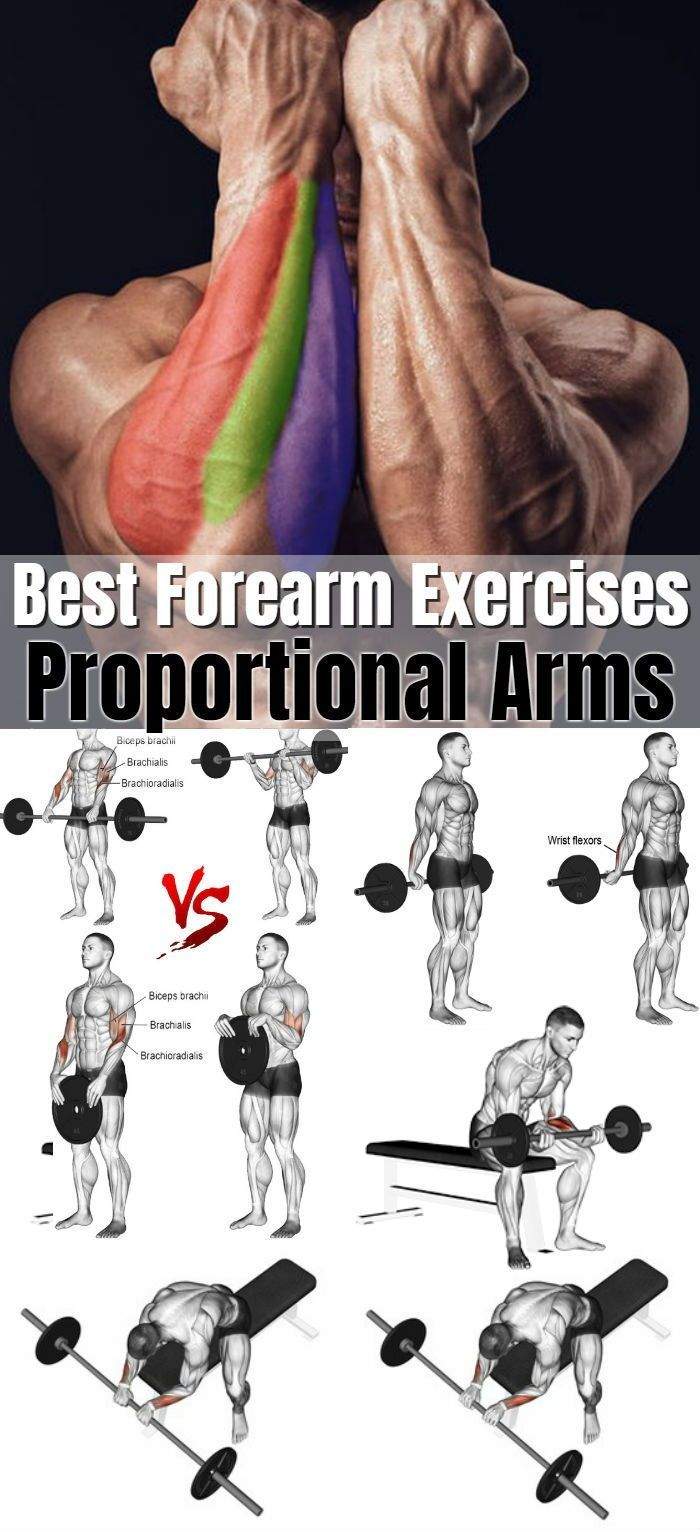 6 Of The Best Forearm Exercises For Muscle Growth And Strength For Proportional Arms #armexercises