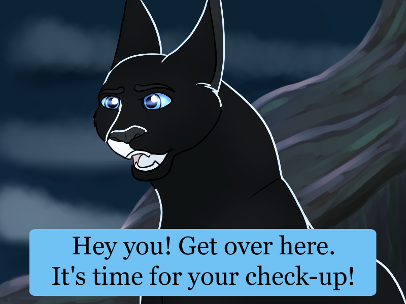 Hey ShadowClan time for a check-up! (Mini-Event) by SapphireSquire.deviantart.com on @DeviantArt