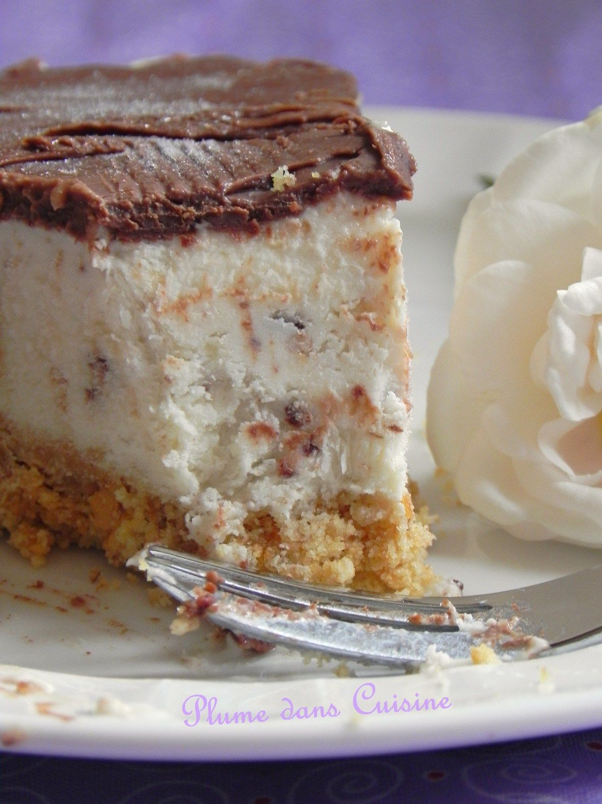 Cheesecake glacé banane-chocolat (50)