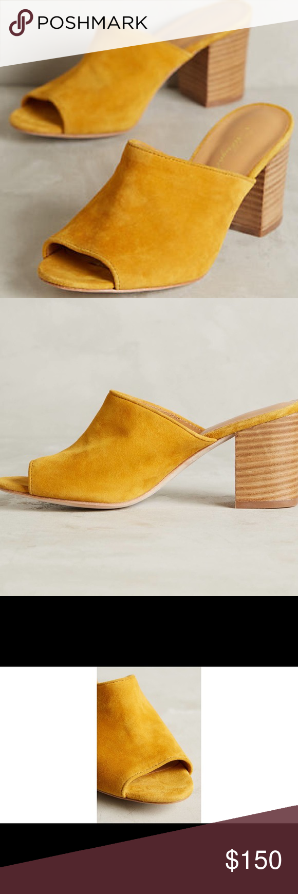 d86526267a855 Miss Albright Maroccana mules Suede upper, leather insoles, made in Spain,  3.25 inches heel.... mustard color very neutral... fits Usa size 7.5 to 8  ...
