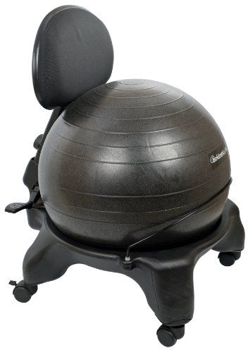 Isokinetics Inc Brand Adjustable Back Exercise Ball Chair
