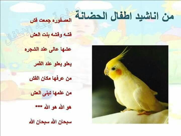 أنشودة العصفورة بنت العش Arabic Kids Islamic Kids Activities Learning Arabic