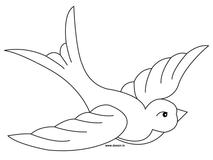 Dessin Facile Hirondelle Bird Template Art Drawings For Kids Coloring Pages