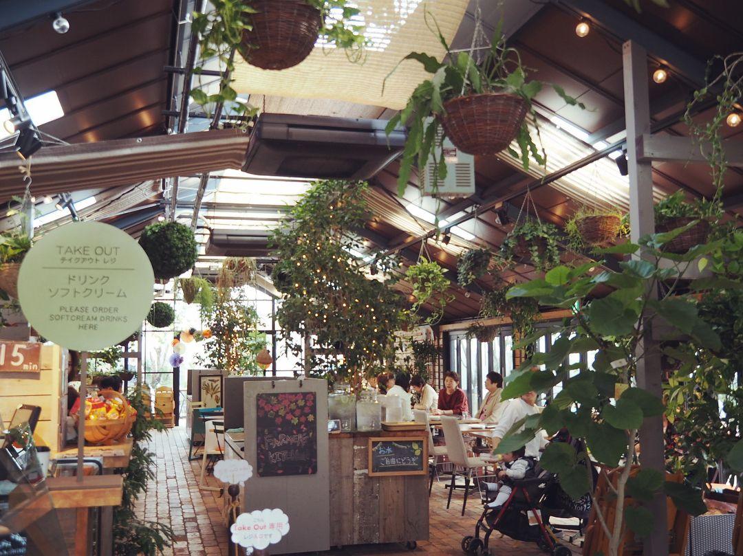 きょうは家族でおでかけ 楽しかった 凪も自然いっぱいの中 気持ちいい風にうとうと かなりばえる場所やった 何ヶ月かぶりにやっとドッグランこれて 終始ティムが嬉しそうでよかった オムツがお似合い Thefarm ペットカフェ 大阪カフェ ドッグカフェ