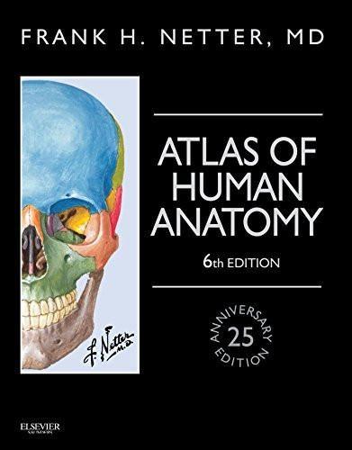Atlas Of Human Anatomy Marketing Board Pinterest Human Anatomy