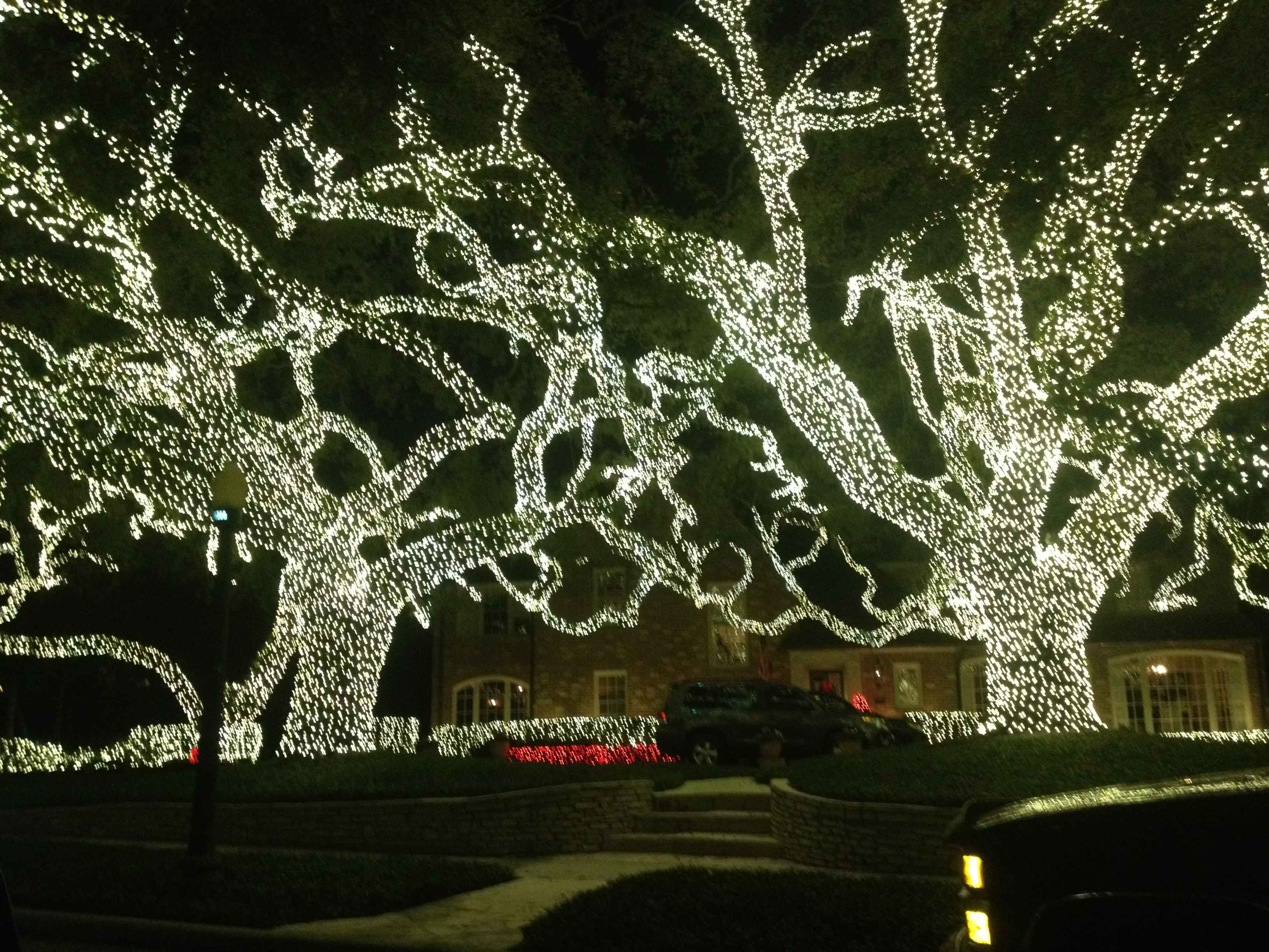 Christmas lights as decoration year round - Christmas Lights In Houston