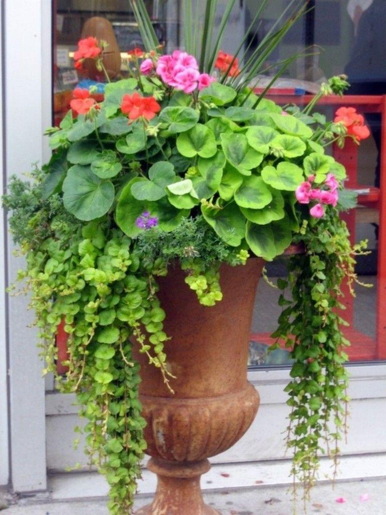 Best 15 Amazing Container Garden Ideas To Increase Your Home - Home-vegetable-garden-design