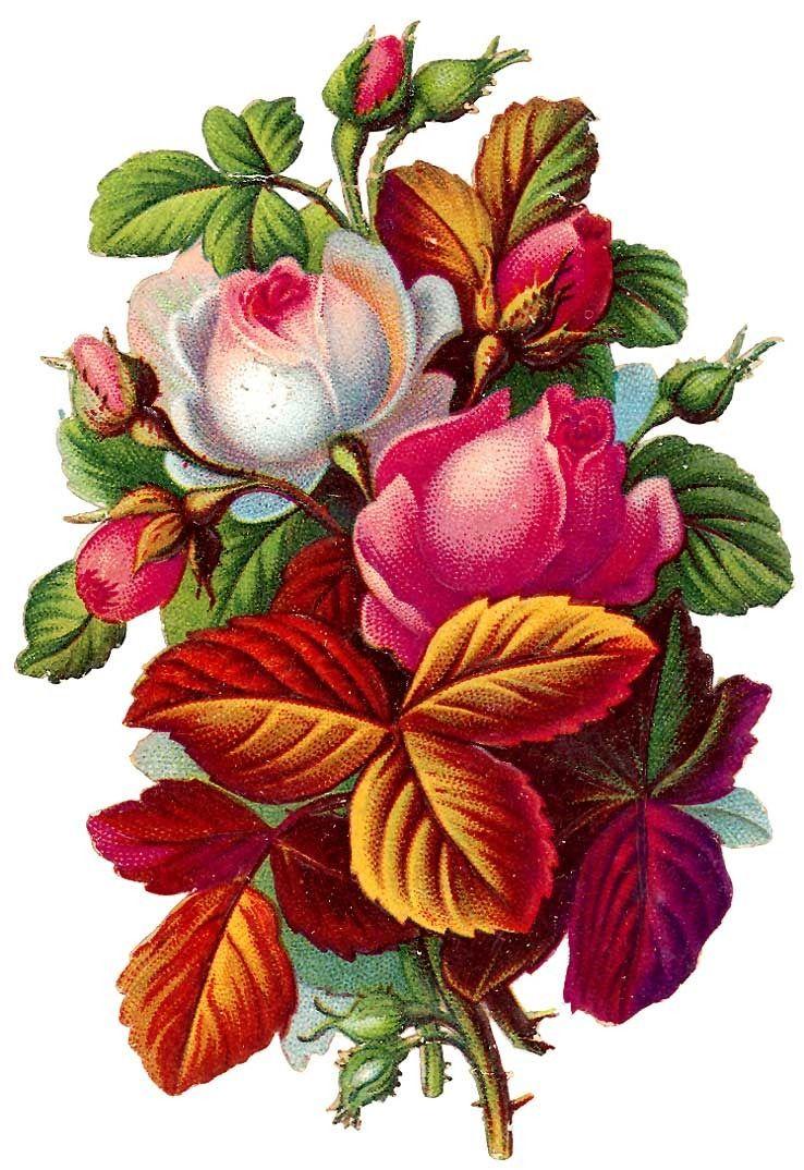[apple]꽃라벨-3 : 네이버 블로그