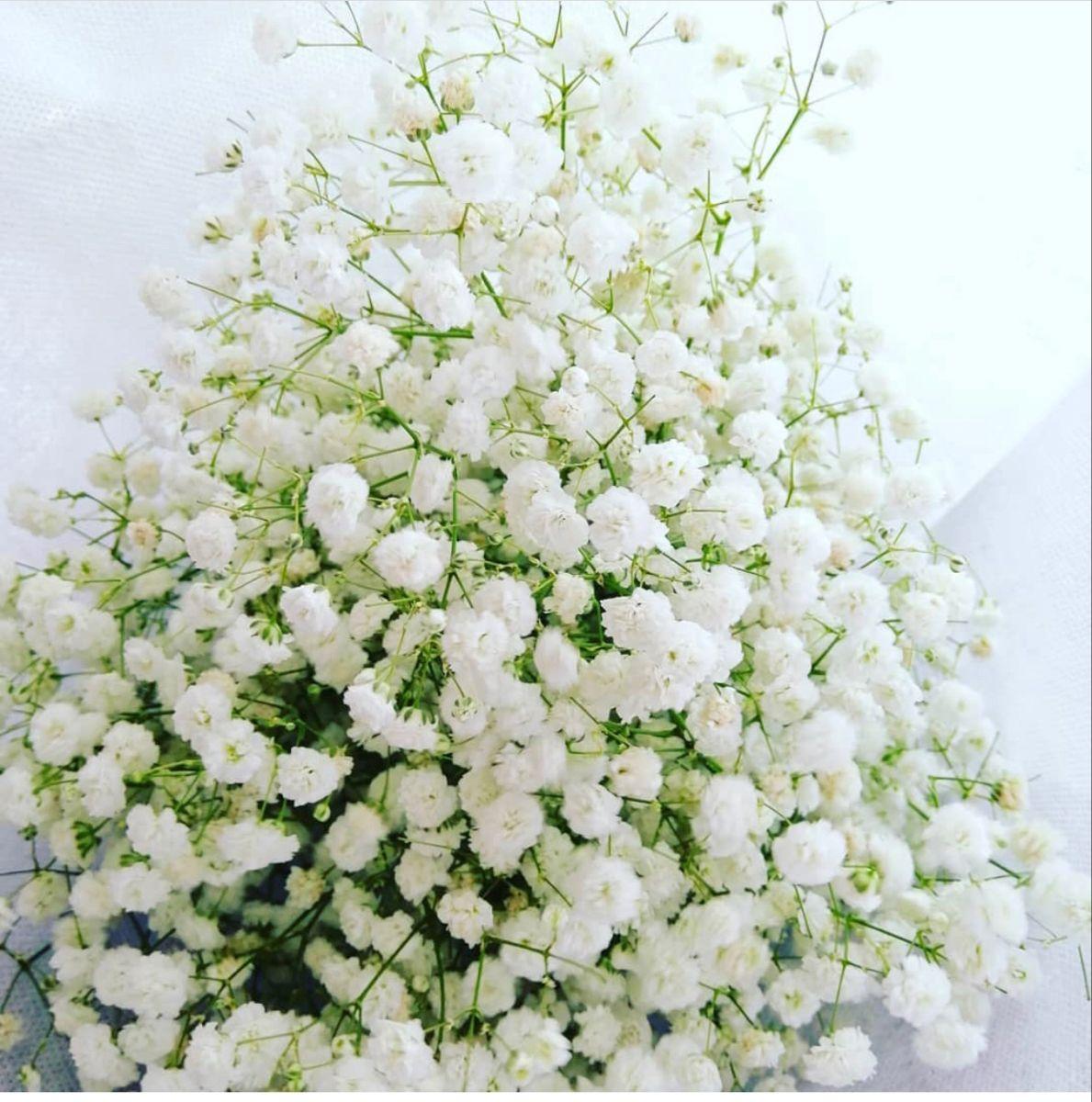 Baby Breath Flowers In 2020 Online Wedding Flowers Flowers For Sale Baby S Breath Wedding Flowers