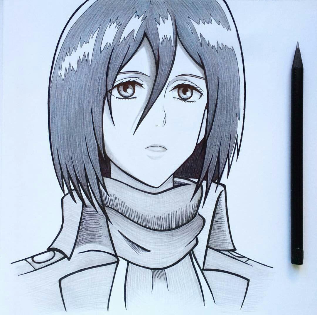 Mikasa Desenhos Desenhos A Lapis Desenho