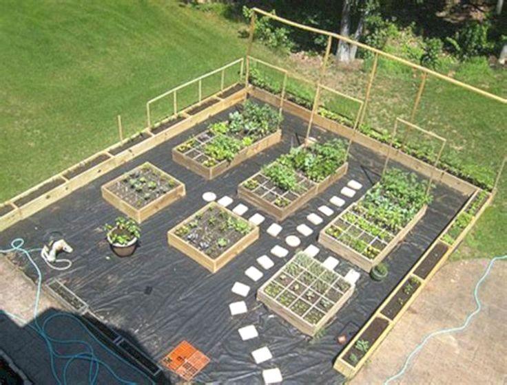 Small Vegetable Garden Layout Ideas DECOREDO