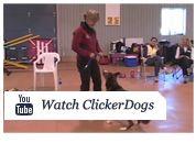 Say Yes Dog Training Susan Garrett S Dog Training Business In