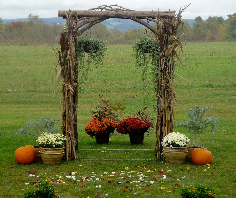 Rustic Wedding Arbors: Rustic Outdoor Wedding Ideas