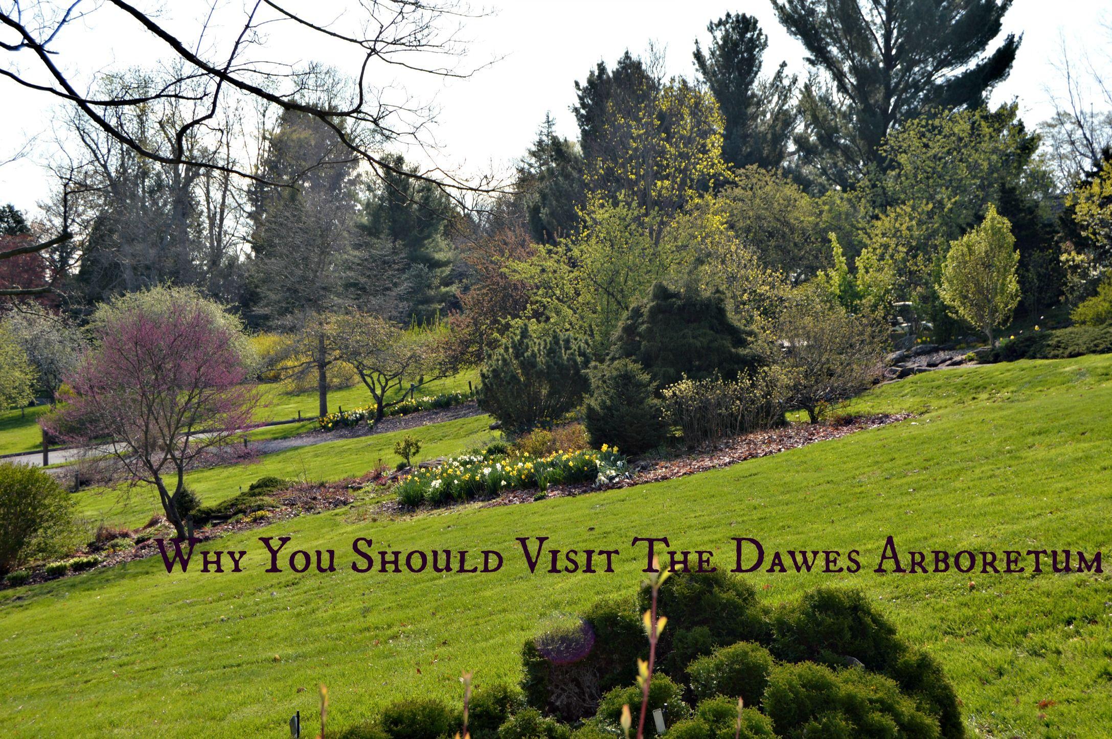 Visiting The Dawes Arboretum Gem Of Central Ohio Scenery