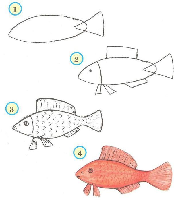 vis tekenen met kleuters | under the sea | pinterest | dibujos de